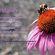 Diligence Poster