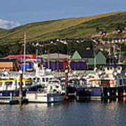 Dingle Harbour County Kerry Ireland Poster