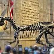 Dinosaur At The Natural History Museum Poster