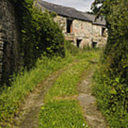Dirt Path To Stone Building Poster