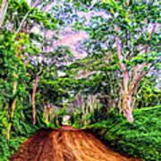 Dirt Road To Secret Beach On Kauai Poster
