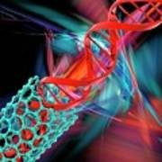 Dna Molecule And Nanotube Poster