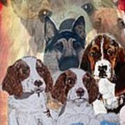 Dog Collage Poster
