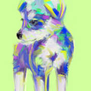 Dog Cute Puppy Poster