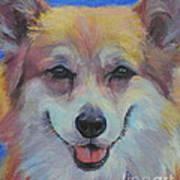 Dog Days of Summer 3 Poster