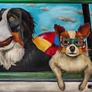 Dog Days Of Summer Edit 3 Poster