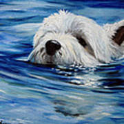 Doggie Paddle Poster