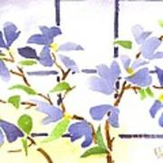Dogwood In The Window Poster
