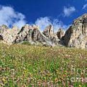 Dolomiti - Flowered Meadow  Poster