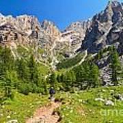Dolomiti -landscape In Contrin Valley Poster