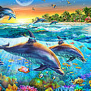 Dolphin Bay Poster by Adrian Chesterman