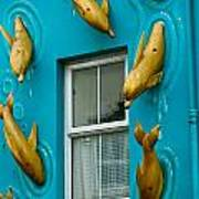 Dolphins At The Window Poster