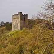 Dolwyddelan Castle Poster