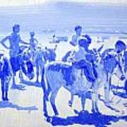 Donkey's On The Beach Poster
