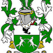 Donohue Coat Of Arms Irish Poster