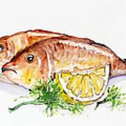Dorado Fish Poster