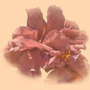 Double Hibiscus Portrait Poster