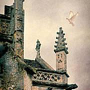 Dove Landing On Church Poster