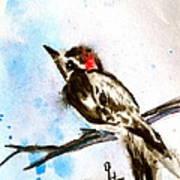 Downy Woodpecker Sumi-e Poster