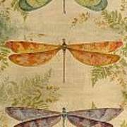 Dragonflies Among The Ferns-12415 Poster