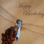 Dragonfly Birthday Card Poster