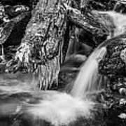 Dragons Teeth Icicles Waterfall Great Smoky Mountains Painted Bw    Poster