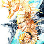 Dreaming Of A Seahorse  Poster