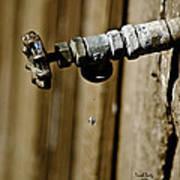 Drip...drip...drip...drip Poster by Trish Tritz