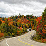 Driving Through Algonquin Park In Fall Poster