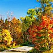 Driving Through Autumn Poster