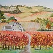 Driving Through Paso Robles Poster