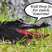 Drop In For Lunch Greeting Card Poster by Al Powell Photography USA