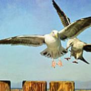 Dual Landing Poster