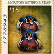 Duck Stamp Art Poster