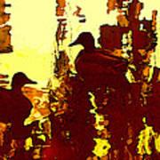 Ducks On Red Lake 3 Poster