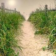 Dunes Catch Light Poster