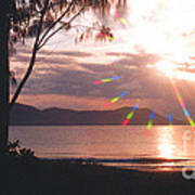 Dunk Island Australia Poster by Jerome Stumphauzer