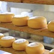 Dutch Cheese Poster