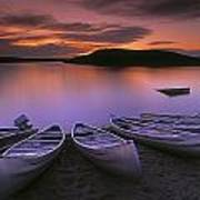 D.wiggett Canoes On Shore, Pink And Poster by First Light