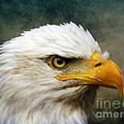Eagle Art Poster