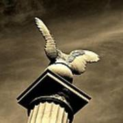 Eagle In Stone Poster