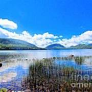Eagle Lake In Acadia Poster