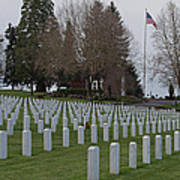 Eagle Point National Cemetery In Winter 2 Poster