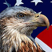 Eagle With Us American Flag Poster