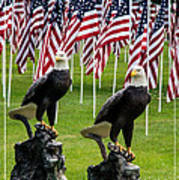 Eagles And Flags On Memorial Day Poster