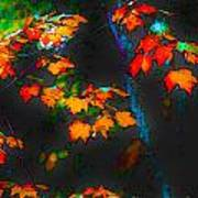Early Autum Poster
