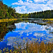 Early Autumn At Fly Pond - Old Forge Ny Poster by David Patterson