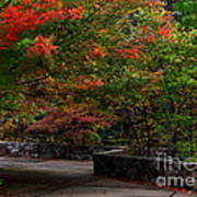 Early Fall At Talimena Park Poster