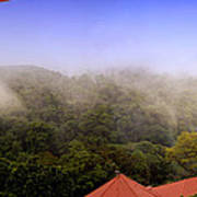 Early Morning Mist Over The Rain Forest Poster