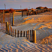 Early Morning On The Dunes I Poster by Steven Ainsworth